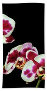 Isolated Orchids Bath Towel