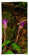 Jack In The Pulpit Bath Towel