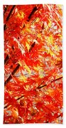 Japanese Maple Leaves 12 In The Fall Bath Towel