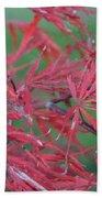 Japanese Red Leaf Maple Hybrid Bath Towel