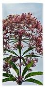 Joe-pye Weed Wildflower - Eupatorium Bath Towel