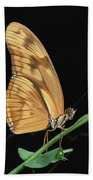 Julia Butterfly Dryas Iulia Portrait Bath Towel