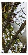 Juvenile Snowy Egret Bath Towel