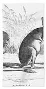 Kangaroo Rat Bath Towel