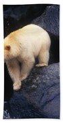 Kermode Bear On Boulder Hunting Salmon Bath Towel