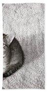 Kitty's Shadow Bath Towel