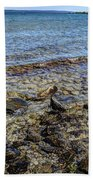 Lake Michigan 1 Bath Towel