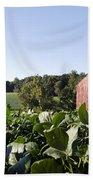 Landscape Soybean Field In Morning Sun Bath Towel