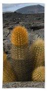 Lava Cactus Brachycereus Nesioticus Bath Towel