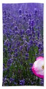 Lavender Field With Poppy Bath Towel