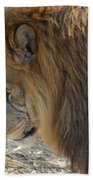 Le Lion Bath Towel