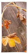 Leaf And Old Wood Fence Bath Towel