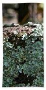 Lichens Lace Bath Towel