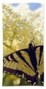 Swallowtail Lilac Spring Photo Bath Towel
