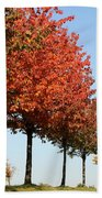 Line Of Autumn Trees Bath Towel