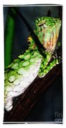 Lizard With Oil Painting Effect Bath Towel