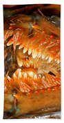 Lobster Mouth Bath Towel