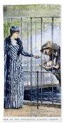 London Zoo, 1891 Bath Towel