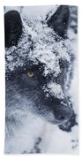 Lone Wolf In Snow Bath Towel