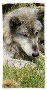 Lone Wolf Bath Towel