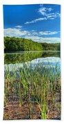 Long Branch Lake Marsh Bath Towel