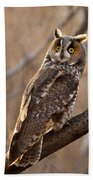 Long-eared Owl Bath Towel