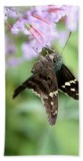 Long Tailed Skipper - Urbanus Proteus Bath Towel