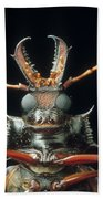 Longhorn Beetle Macrodontia Cervicornis Bath Towel