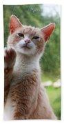 Lovely Cat Bath Towel