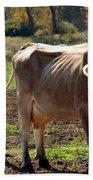 Low Cow Bath Towel