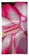 Luminous Cactus Flower Hand Towel