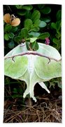 Luna Moths' Afternoon Delight Bath Towel