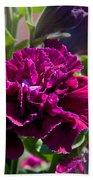 Maco Petunia Flower Double Burgundy Madness Art Prints Bath Towel