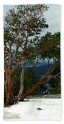 Madrone On Young Hill Bath Towel