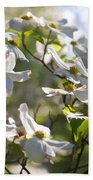 Magical White Flowering Dogwood Blossoms Bath Towel