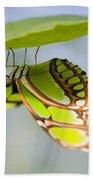 Malachite Butterfly On Leaf Bath Towel