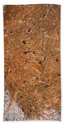Mammalian Histology Bath Towel