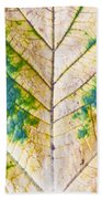 Maple Leaf Hand Towel