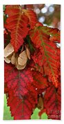 Maple Leaves And Seeds Bath Towel