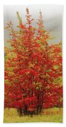 Maples In The Mist Hand Towel