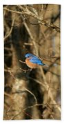 March Bluebird Bath Towel