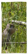 Marmot Bath Towel