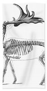 Megaloceros, Cenozoic Mammal Bath Towel