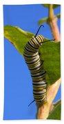 Monarch Caterpillar Bath Towel
