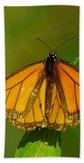 Monarch On Hackberry Bath Towel