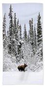 Moose In Deep Snow, Near Teslin, Yukon Bath Towel