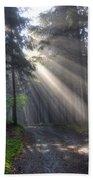 Morning Forest In Fog Bath Towel