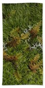Moss And Lichen Hand Towel
