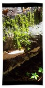 Mossy Waterfall On Mushroom Rock Bath Towel