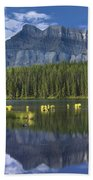 Mount Rundle And Boreal Forest  Bath Towel